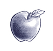 Drawing of an apple.